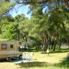 Camping Aurelia Club di Roma Offre Nuova Convenzione