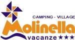 logo-camping-village