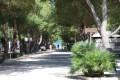 Camping La Pineta a San Vito Lo Capo (TP) Rinnova la Convenzione