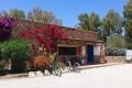 Calacavallo, Villaggio Campeggio a San Tedoro Sardegna Offre Nuova Convenzione