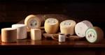 001-agriturismo-nuragheelighe-azienda-agricola-produzione-formaggi-sardi-1-1-1024x542
